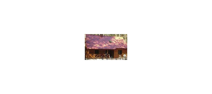 Budowa domów z drewna - zdjęcie
