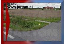 Grunt w Błoniu ze zjazdem z DK2 1.3ha - zdjęcie