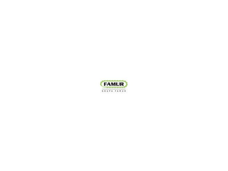 Grupa FAMUR – kolejny krok w tworzeniu dywizji odlewniczej zdjęcie