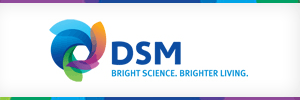 DSM Engineering Plastics