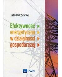 Efektywność energetyczna w działalności gospodarczej - okładka