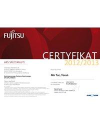 Autoryzowany Partner Serwisowy APS SPLIT/MULTI 2012/2013 - zdjęcie