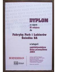 Najefektywniejsze Polskie Firmy 2004 - zdjęcie