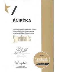 Superbrand Polska 2013 - zdjęcie