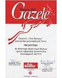 Gazela Biznesu 2001 - zdjęcie