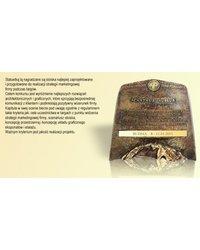 Nagroda w konkursie Acanthus Aureus - Targi Budma 2011 - zdjęcie