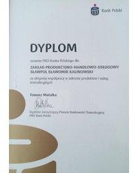 Dyplom uznania PKO Banku Polskiego - zdjęcie