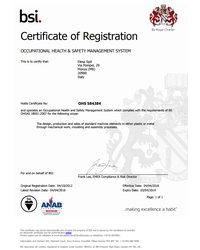 Certyfikat OHS 584384 - zdjęcie
