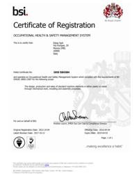 Certyfikat ISO 18001 - zdjęcie