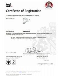 System Zarządzania Bezpieczeństwem i Higieną Pracy ISO 18001 - Elesa S.p.A. - zdjęcie