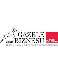 Gazele Biznesu 2012 - zdjęcie