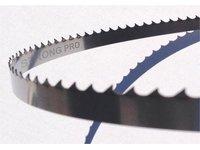 Piła taśmowa SWORD-MASTER STRONG PRO - zdjęcie