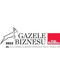 Gazela Biznesu 2012 - zdjęcie