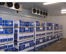 Komory chłodnicze do przechowywania produktów spożywczych - zdjęcie