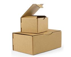 Kartony pocztowe białe i brązowe Rajapost - zdjęcie