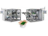 System pakowania zbiorczego w karton czteroklapowy - zdjęcie