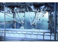 Rozwiązania zrobotyzowane Bosch Delta dla branży spożywczej - zdjęcie
