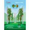 Instrukcja podwiązywania drzewek - zdjęcie