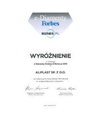 e-Diamenty Forbesa & Biznes.pl 2013 - zdjęcie