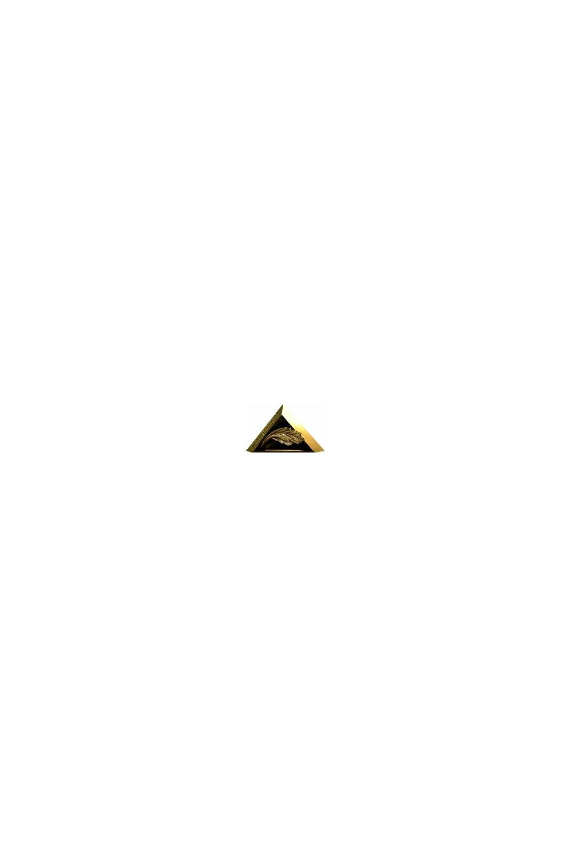 Medal Targów BUDMA 2020 - ACANTHUS AUREUS - zdjęcie
