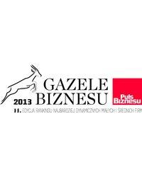 Gazele Biznesu 2014 - zdjęcie