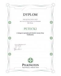 Dyplom Pilkington IGP - zdjęcie