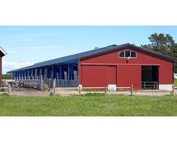 Hale rolnicze - Budynki inwentarskie - zdjęcie