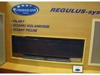 Grzejniki REGULUS-system INSIDE - zdjęcie
