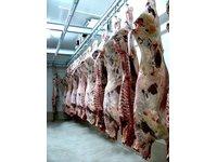 Mięsa wieprzowe - zdjęcie