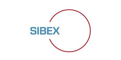 1 Targi Budowlane Silesia Building Expo SIBEX - zdjęcie
