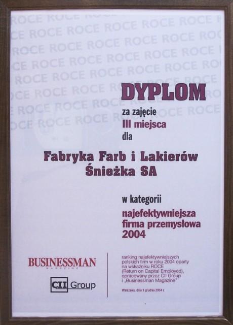 Najefektywniejsze Polskie Firmy 2004 Śnieżka