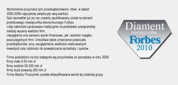 Diamenty Forbesa 2010 firmy Blachy Pruszyński
